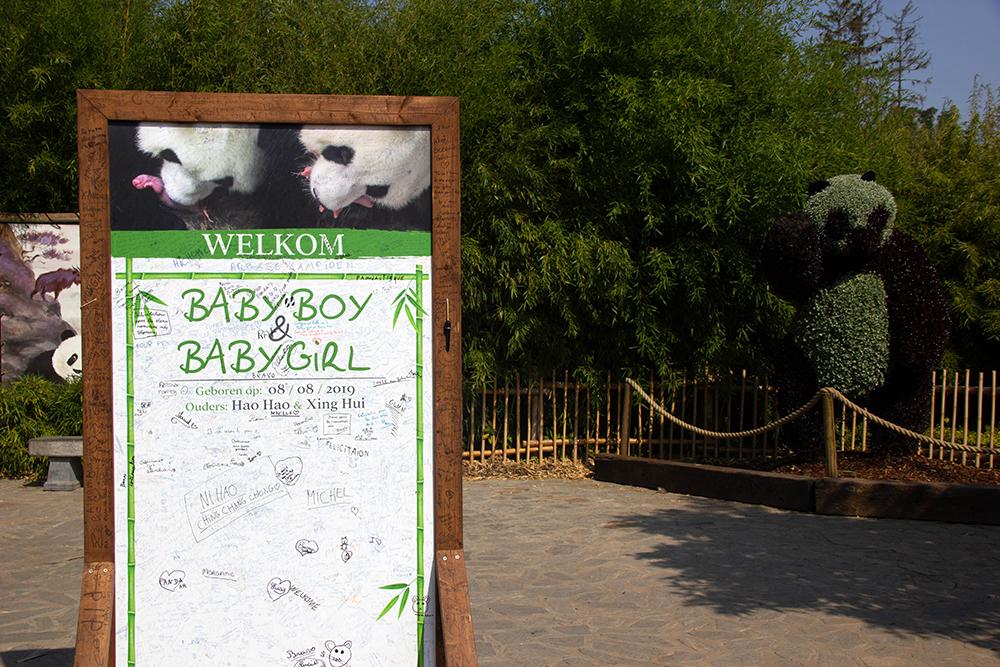 גן החיות פיירי דייזה, ליד בריסל | בלגיה עם ילדים